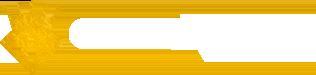 Cristian Deluxe Retina Logo